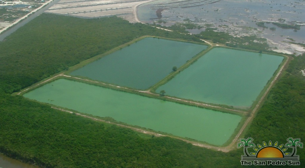 Types of WasteWater Treatment Ponds - Types of Ponds