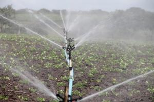 Classification of Irrigation Schemes