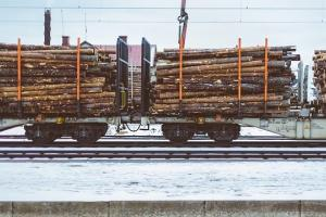 Logs - Wood Timber Properties